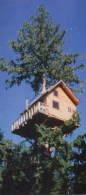 The Treehouse, before installation of the Stairwell